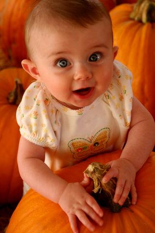 Pumpkin Patch 040E