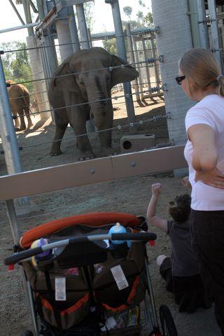 Zoo 087E