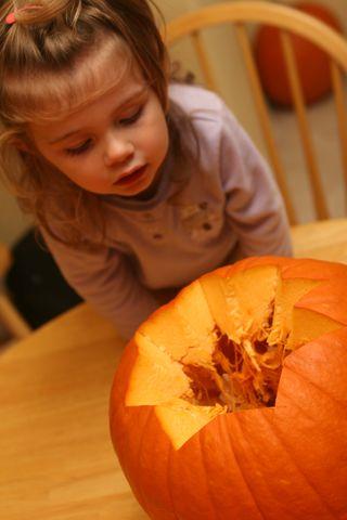 Pumpkin 006
