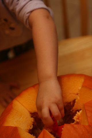 Pumpkin 009
